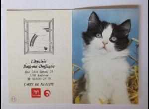 """""""Katzen, Taschenkalender, Werbung"""" Jahr 1991 ♥"""
