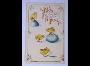 Ostern, Küken, Ostereier, 1915, Prägekarte ♥ (63056)