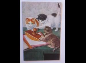 Katzen, Stempel, Gewandte Korrespodenten, 1931 ♥