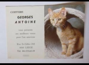 """""""Katzen, Taschenkalender, Werbung"""" Jahr 1997 ♥"""