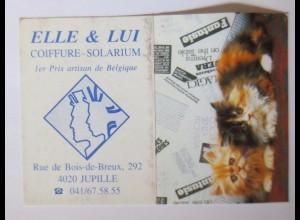 """""""Katzen, Taschenkalender, Werbung"""" Jahr 1996 ♥"""