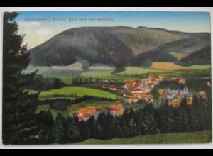 Schlesien, Görbersdorf, Buchberg 1917