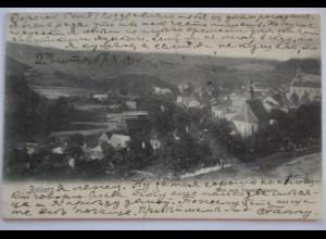 Schlesien, Reinerz, Ortsansicht 1904