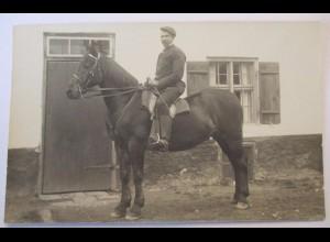 Pferd, Reiter, Fotokarte (31854)