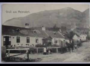 Polen, Schlesien, Gruß aus Meiersdorf, Bewohner, ca. 1910 (27707)