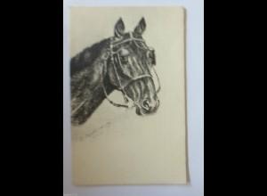 """Pferde"" 1900 ♥ (917)"