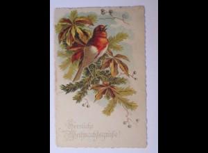 Weihnachten, Vogel, Tannenzweig, 1935 ♥ (39224)