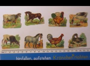 Tiere, Kuh, Hühner, Ente, Pferd, 8 Alte Oblaten 1900 ♥ (42828)