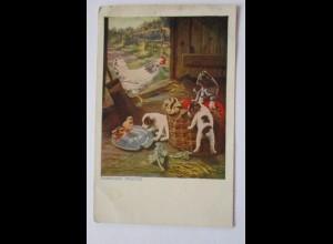 Bauernhof, Tiere, Katze, Hund, sign. John Hayes (38633)