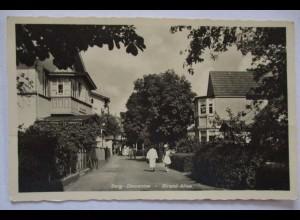 Polen, Pommern, Berg Dievenow (Dziwnów) Strand Allee, Feldpost 1941 (26839)