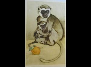 """""""Tiere, Affen, Obst"""" 1971 aus Russland ♥"""