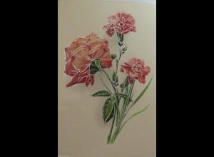 Namenstag, Nelken, 1905 ♥ (229)