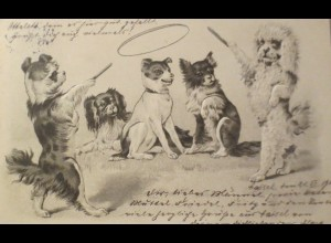 """""""Vermenschlichte, Hund, Pudel, Reifen Treiben, Spiel"""" 1902, Prägekarte ♥"""