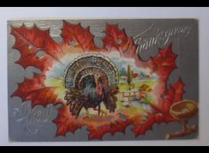 Thanksgiving Day, Truthahn, Blatt, 1911, Prägekarte ♥ (43754)
