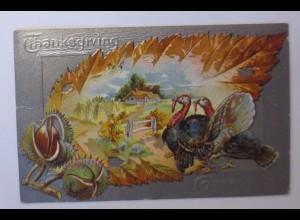 Thanksgiving Day, Truthahn, Kastanien, Blatt, 1909, Prägekarte ♥ (43753)