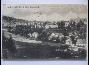 Bad Gräfenberg, Jeseník (Tschechien), Ortsansicht, 1917