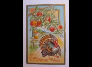 Thanksgiving Day, Apfelbaum, Truthahn, 1910, Prägekarte ♥ (43751)