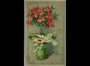 """""""Namenstag, Blumen, Taube, Brief"""" 1909, Serie M.S.i.B. ♥"""