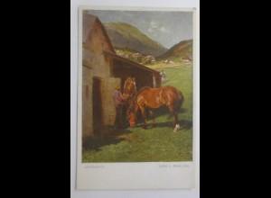 Pferde, Arbeitspferde, 1910, Julius v. Blaas, Wiener Kunst ♥ (18922)