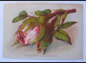 Glückwunschkärtchen Blumenmotiv, Rose, 1900, 10 cm x 6,5 cm ♥ (20050)