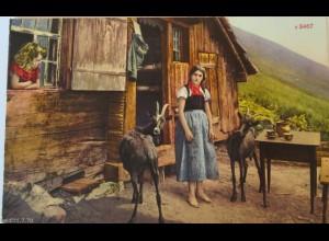 """""""Alm, Hütte,Ziegen, Frauen, Kinder"""" 1916 ♥ (18628)"""