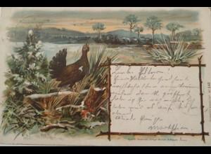 """""""Auerhahn, Landschaft"""" 1898, Lotzdorf-Radeberg, Sachsen ♥ (3343)"""