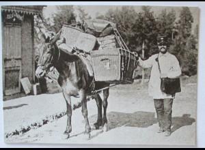 Post Esel, Maultierpost in Mayens de Sion Schweiz, Sonderkarte 1990 (32453)