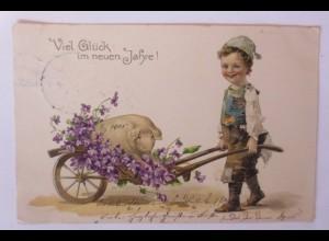 """""""Neujahr, Kinder, Schwein, Schubkarre, Blumen"""" 1904 ♥ (48550)"""