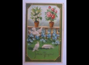 Pfingsten, Tauben, Blumen, 1911, Prägekarte ♥ (41768)