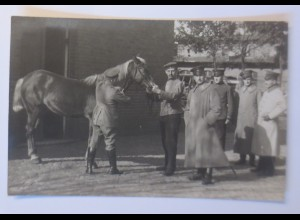WW1 Offizier zu Pferd, Offiziere, Fotokarte 1915 ♥ (44674)