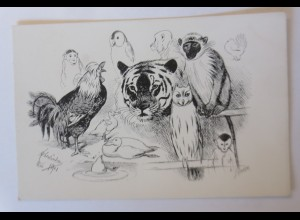 Affen, Tiger, Hahn, Eule, Enten, 1900, Adolf Oberländer ♥ (41496)