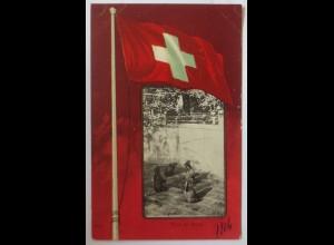Schweiz, Bern, Bären, Muz de Berne, 1904 ♥ (17897)