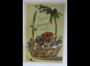 Mailick, Geburtstag, Korb, Dackel, Hund, Blumen, 1902, Prägekarte ♥ (7520)