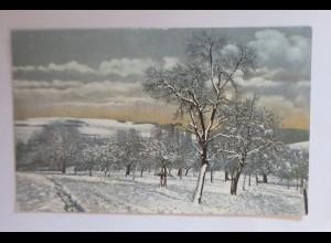 Photochromie, Winter Idylle, Winterlandschaft 1910. ♥ (48184)