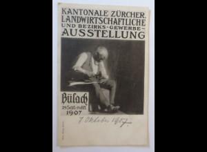 Kantonale Zürich Landwirtschaftliche Ausstellung Schuster 1907 ♥ (57026)