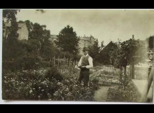 Garten Gärtner Blumen Kleingarten Schrebergarten, original Foto ca. 1920 (45981)