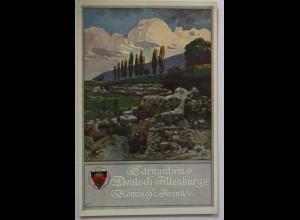 Deutscher Schulverein DSV 396 Deutsch Altenburg (55908)