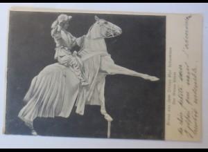 Gruß aus dem Zirkus Max Schumann, Der Weisse Reiter, 1906 ♥ (4685)
