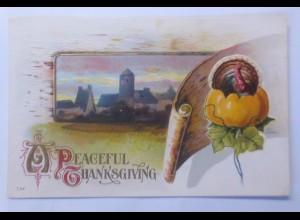 Thanksgiving, Truthahn, Kürbis, 1910, Prägekarte ♥ (59684)