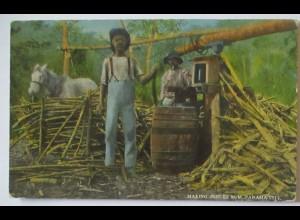 Alkohol Rum Farbige, Making Jungle Rum in Panama City ca. 1910 (3570)