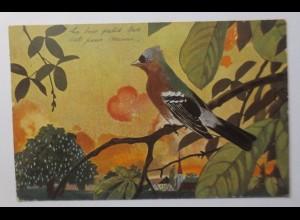 """""""Vogel, Buchfink, Landschaft"""" 1906 ♥"""