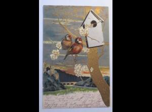 """Vogel, Vogelhaus, Sonne, Landschaft"" 1903, Prägekarte ♥"