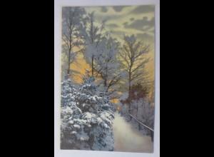 Photochromie, Winterlandschaft, Wald, Abendrot, 1910 ♥ (11426)