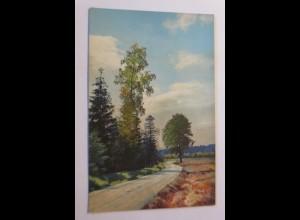 Photochromie, Dresdner Heide, a.d.Strasse v. Weissen Hirsch, 1910 ♥ (19864)