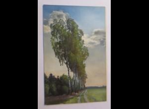 Photochromie, Dresdner Heide, Hofewiese, 1910 ♥ (41303)