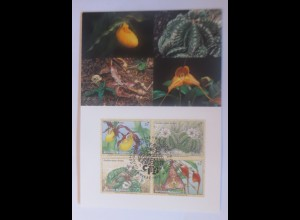 UNO Wien Gefährdeten Arten 1996 Maximumkarte Nr.40 ♥ (13187)