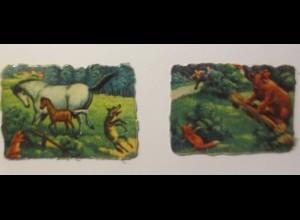 Oblaten, Tiere, Pferde, Bär, Fuchs, 5,5 cm x 4 cm ♥ (45973)