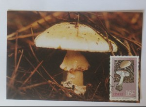 Maximumkarten Ciskei Pilze 1987 ♥ (10486)