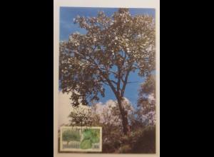 Maximumkarten Transkei Indigene Bäume 1989 ♥ (21460)