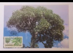Maximumkarten Transkei Indigene Bäume 1989 ♥ (66550)